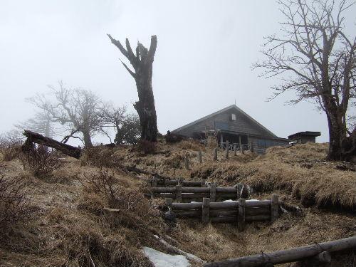 2008_0413miyanasansou0178s.JPG
